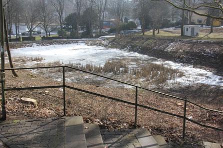 Rodung des Wildwuchses um den kleinen Schwanenteich im Siegener Wenscht macht Teich wieder siicht- und erlebbar.